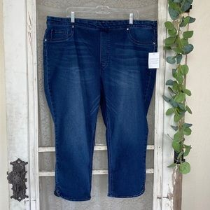 Diane Gilman Stretch Capri Blue Jeans Jeggings 2X